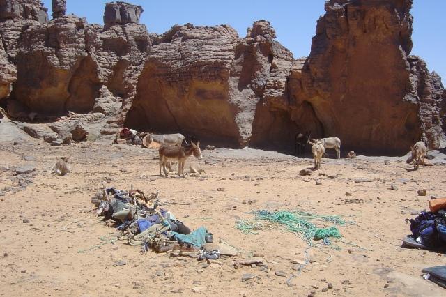 Argelia-2007 108