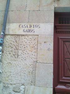 Casa de los gatos Salamanca