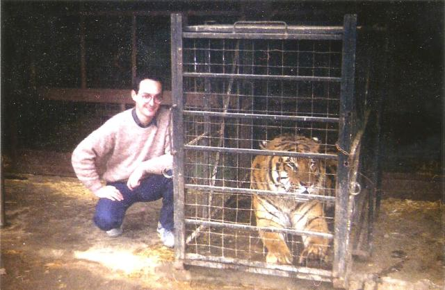 tigres-3