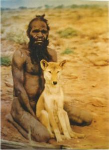 australiano con dingo