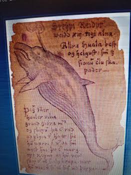 ballena grabado antiguo