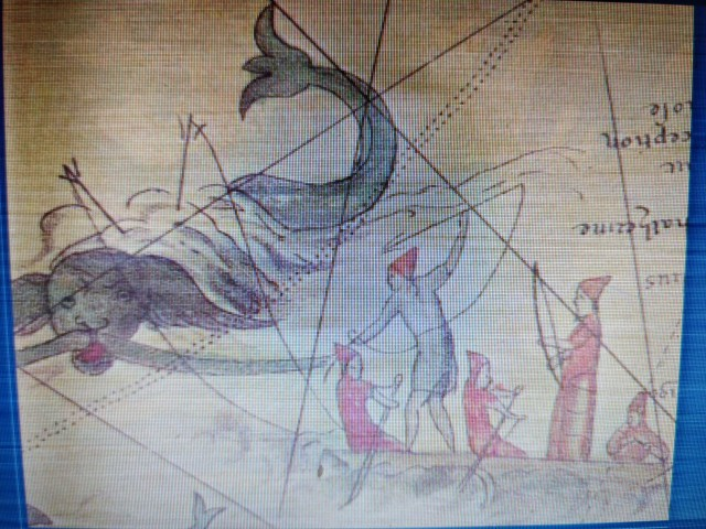 ballenas chalupa 3