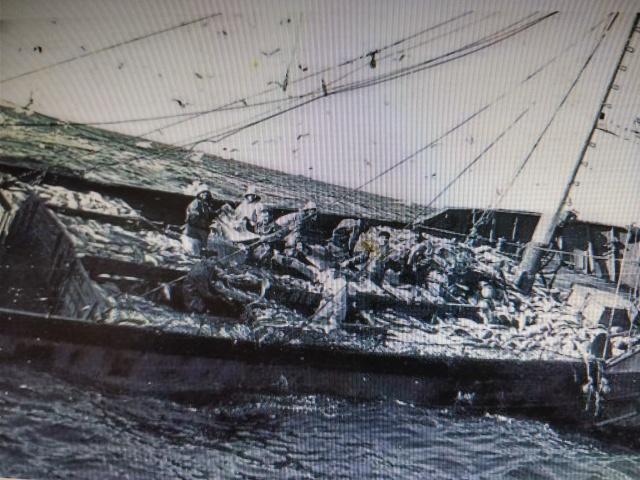 balleneros barco bacaladero