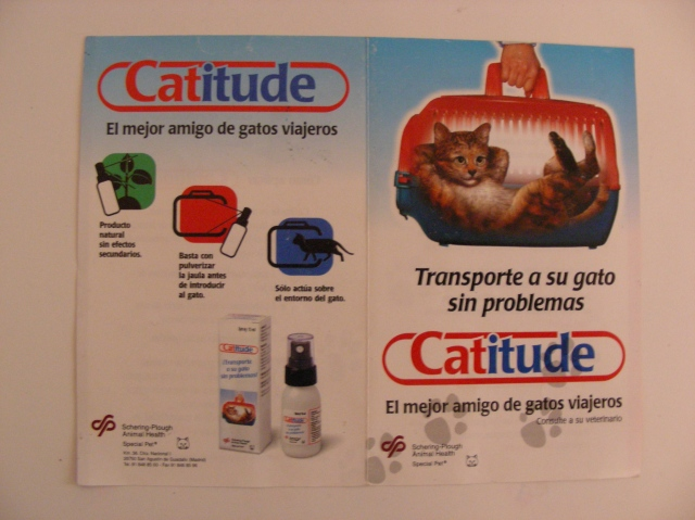 Catitude 1