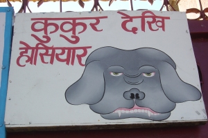 India 008