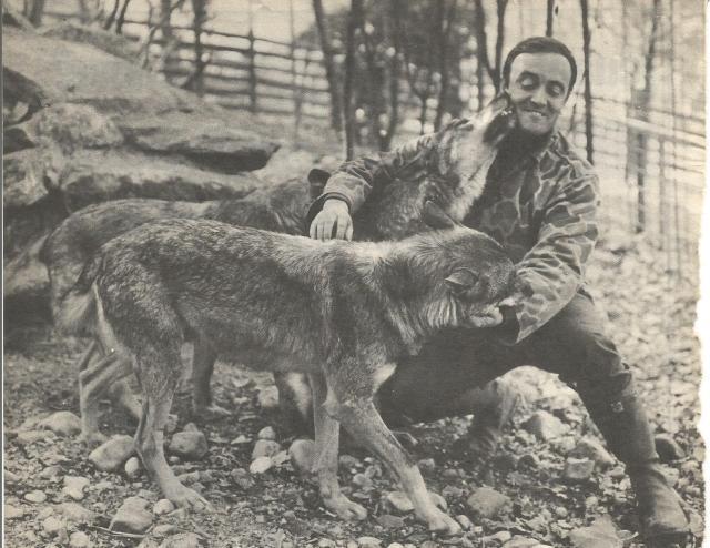 lobos y rodriguez de la fuente