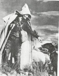 pastor castellano 20003