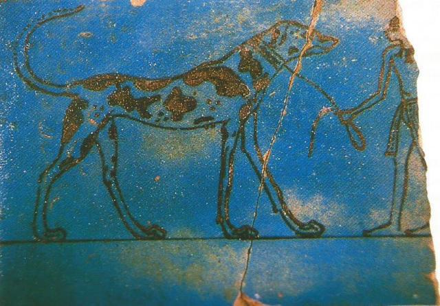 teja egipcia con perro