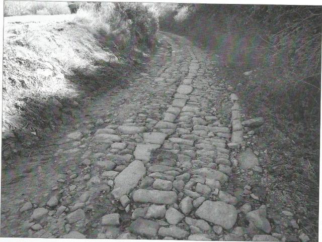 vias romanas0002