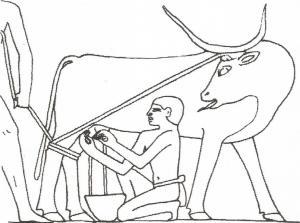 soplado Mastaba de Kagemni, Antiguo Imperio