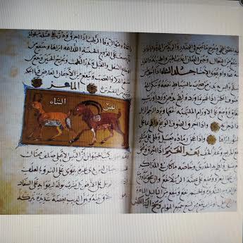 Manuscritos. utilidades de los animales