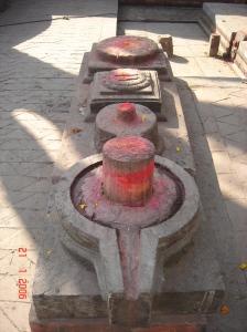 India 528